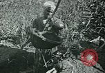 Image of Ancient methods of agriculture in the Middle East Middle East, 1936, second 26 stock footage video 65675072700