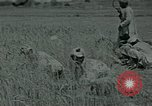 Image of Ancient methods of agriculture in the Middle East Middle East, 1936, second 40 stock footage video 65675072700