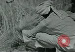 Image of Ancient methods of agriculture in the Middle East Middle East, 1936, second 53 stock footage video 65675072700