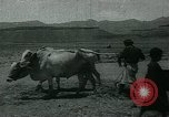 Image of Ancient methods of agriculture in the Middle East Middle East, 1936, second 59 stock footage video 65675072700