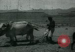 Image of Ancient methods of agriculture in the Middle East Middle East, 1936, second 60 stock footage video 65675072700