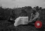 Image of Ferrying Indian soldiers in L-4 airplanes Senai New Guinea, 1944, second 18 stock footage video 65675072749