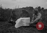 Image of Ferrying Indian soldiers in L-4 airplanes Senai New Guinea, 1944, second 22 stock footage video 65675072749