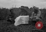 Image of Ferrying Indian soldiers in L-4 airplanes Senai New Guinea, 1944, second 28 stock footage video 65675072749