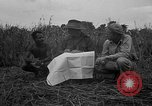 Image of Ferrying Indian soldiers in L-4 airplanes Senai New Guinea, 1944, second 29 stock footage video 65675072749