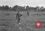 Image of Ferrying Indian soldiers in L-4 airplanes Senai New Guinea, 1944, second 32 stock footage video 65675072749