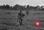 Image of Ferrying Indian soldiers in L-4 airplanes Senai New Guinea, 1944, second 34 stock footage video 65675072749