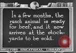Image of cattle ranch United States USA, 1922, second 44 stock footage video 65675072786