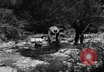 Image of gold panning Arizona United States USA, 1920, second 29 stock footage video 65675072788