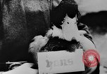 Image of Christmas celebration Germany, 1943, second 20 stock footage video 65675072798