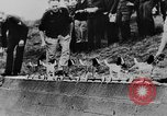 Image of Christmas in Germany in World War 2 Germany, 1943, second 39 stock footage video 65675072799