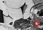 Image of International Cadets Exchange Program United States USA, 1953, second 22 stock footage video 65675072826