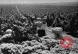 Image of Germany invades on Eastern Front Soviet Union, 1941, second 54 stock footage video 65675072841