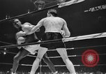 Image of 1941 Golden Glove boxing tournament New York United States USA, 1941, second 27 stock footage video 65675072849