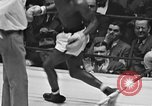 Image of 1941 Golden Glove boxing tournament New York United States USA, 1941, second 32 stock footage video 65675072849