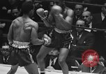 Image of 1941 Golden Glove boxing tournament New York United States USA, 1941, second 48 stock footage video 65675072849