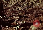 Image of excavation work Colorado United States USA, 1961, second 12 stock footage video 65675072871