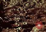 Image of excavation work Colorado United States USA, 1961, second 13 stock footage video 65675072871