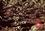 Image of excavation work Colorado United States USA, 1961, second 16 stock footage video 65675072871