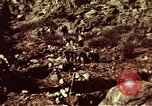 Image of excavation work Colorado United States USA, 1961, second 17 stock footage video 65675072871