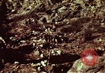 Image of excavation work Colorado United States USA, 1961, second 19 stock footage video 65675072871