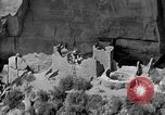 Image of Denver and Rio Grande Western train Colorado United States USA, 1934, second 57 stock footage video 65675072881