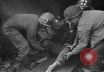 Image of Atrocity victims Germany, 1945, second 16 stock footage video 65675072906