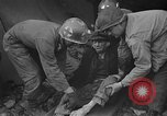 Image of Atrocity victims Germany, 1945, second 17 stock footage video 65675072906