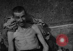 Image of Atrocity victims Germany, 1945, second 28 stock footage video 65675072906