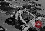 Image of Atrocity victims Germany, 1945, second 33 stock footage video 65675072906