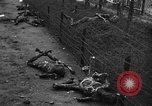 Image of Buchenwald Concentration Camp Germany, 1945, second 41 stock footage video 65675072908