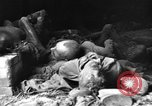 Image of Buchenwald Concentration Camp Germany, 1945, second 60 stock footage video 65675072908