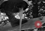 Image of Allied Invasion France, 1944, second 21 stock footage video 65675073006