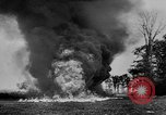 Image of Allied Invasion France, 1944, second 59 stock footage video 65675073006