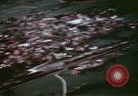 Image of Allied attack Germany, 1945, second 42 stock footage video 65675073101