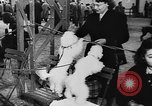 Image of dog show Paris France, 1954, second 19 stock footage video 65675073125
