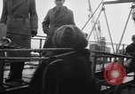 Image of Private Teddy Bear New York United States USA, 1957, second 18 stock footage video 65675073132