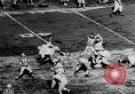 Image of 49ers versus Lions San Francisco California USA, 1957, second 12 stock footage video 65675073135