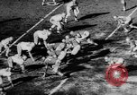 Image of 49ers versus Lions San Francisco California USA, 1957, second 23 stock footage video 65675073135