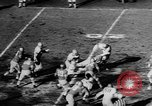 Image of 49ers versus Lions San Francisco California USA, 1957, second 26 stock footage video 65675073135