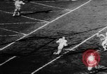 Image of 49ers versus Lions San Francisco California USA, 1957, second 28 stock footage video 65675073135