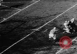 Image of 49ers versus Lions San Francisco California USA, 1957, second 29 stock footage video 65675073135