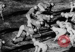 Image of 49ers versus Lions San Francisco California USA, 1957, second 44 stock footage video 65675073135