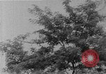 Image of WhiteHurst Freeway and temporary mall buildings Washington DC USA, 1950, second 2 stock footage video 65675073232
