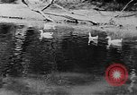 Image of Rock Creek Park and Hains Point Washington DC USA, 1950, second 26 stock footage video 65675073234