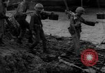 Image of Vietcong captured by Marines Vietnam, 1967, second 25 stock footage video 65675073301