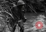 Image of Vietcong captured by Marines Vietnam, 1967, second 33 stock footage video 65675073301