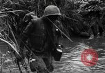 Image of Vietcong captured by Marines Vietnam, 1967, second 34 stock footage video 65675073301