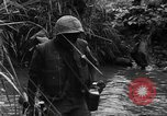 Image of Vietcong captured by Marines Vietnam, 1967, second 35 stock footage video 65675073301