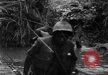 Image of Vietcong captured by Marines Vietnam, 1967, second 36 stock footage video 65675073301